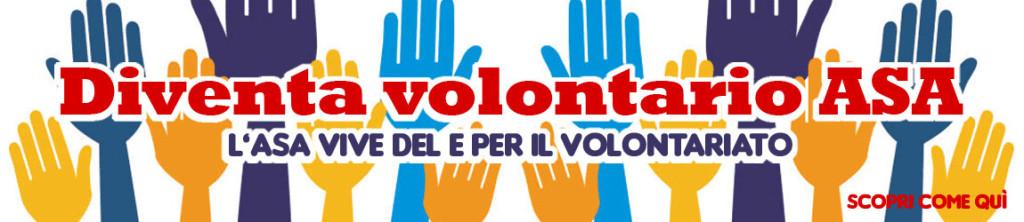 volontariato250